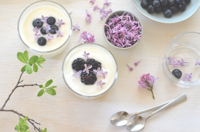 labneh with lilacs and berries; conifères et feuillus; food photography
