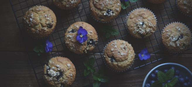 whole wheat breakfast blueberry muffins; conifères et feuillus