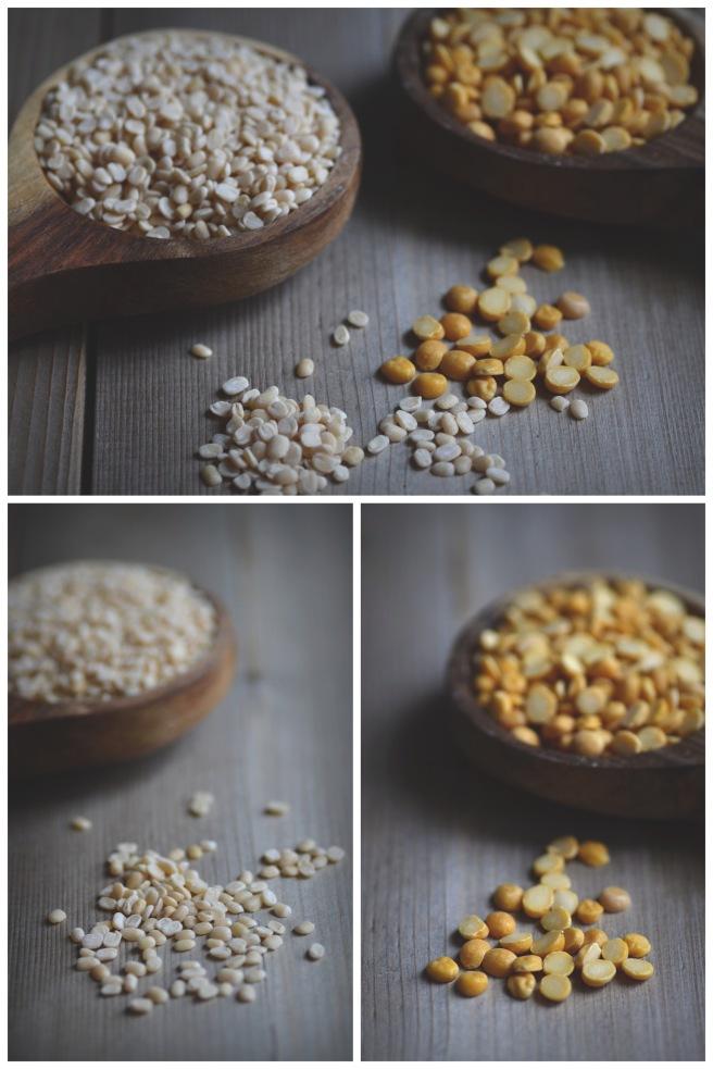 gujarati dhokla | conifères et feuillus food blog