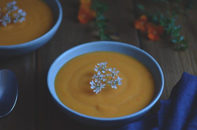 classic cream of carrot soup   conifères & feuillus