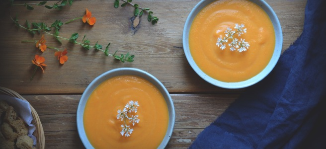 classic cream of carrot soup; conifères et feuillus