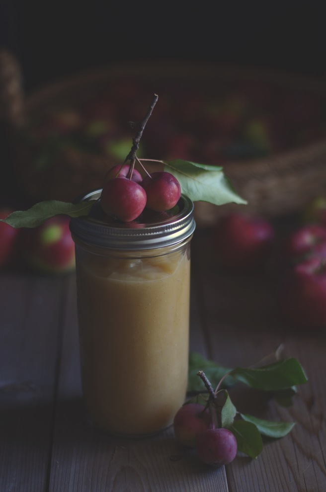 basic applesauce | conifères & feuillus