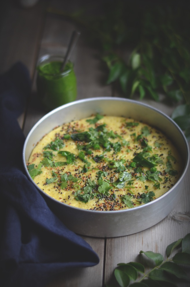 gujarati dhokla | conifères & feuillus