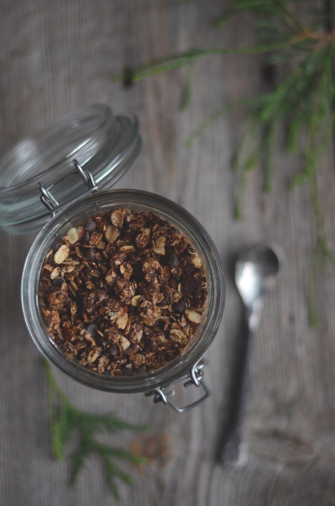 chocolate granola | conifères et feuillus food blog