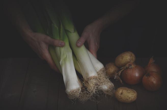 vichyssoise (or leek soup) | conifères & feuillus