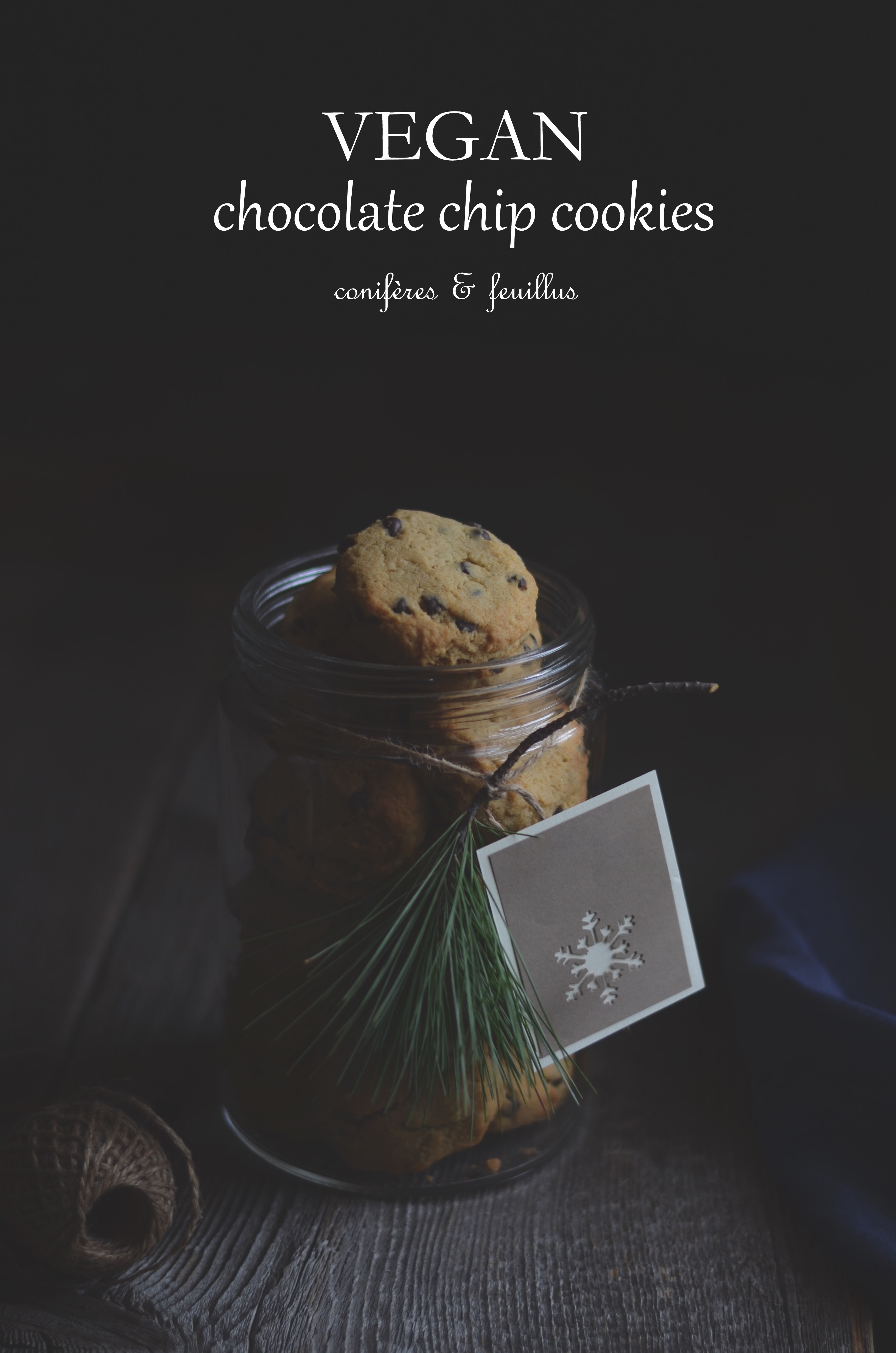 Vegan chocolate chip cookies | conifères & feuillus