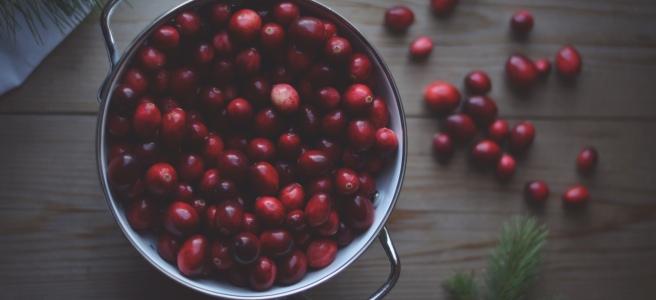 Easy 3 ingredient cranberry sauce recipe | conifères & feuillus