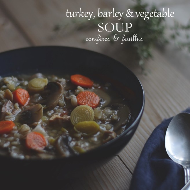turkey, barley and vegetable soup