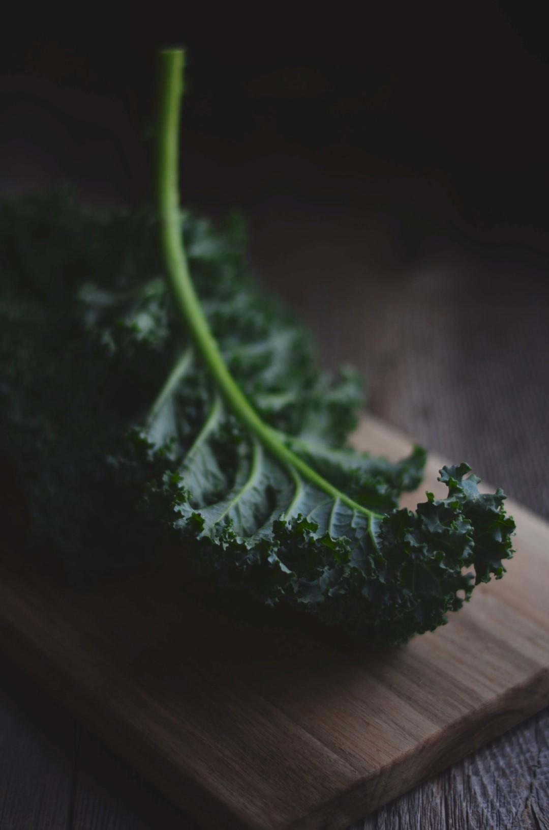 kale | conifères & feuillus