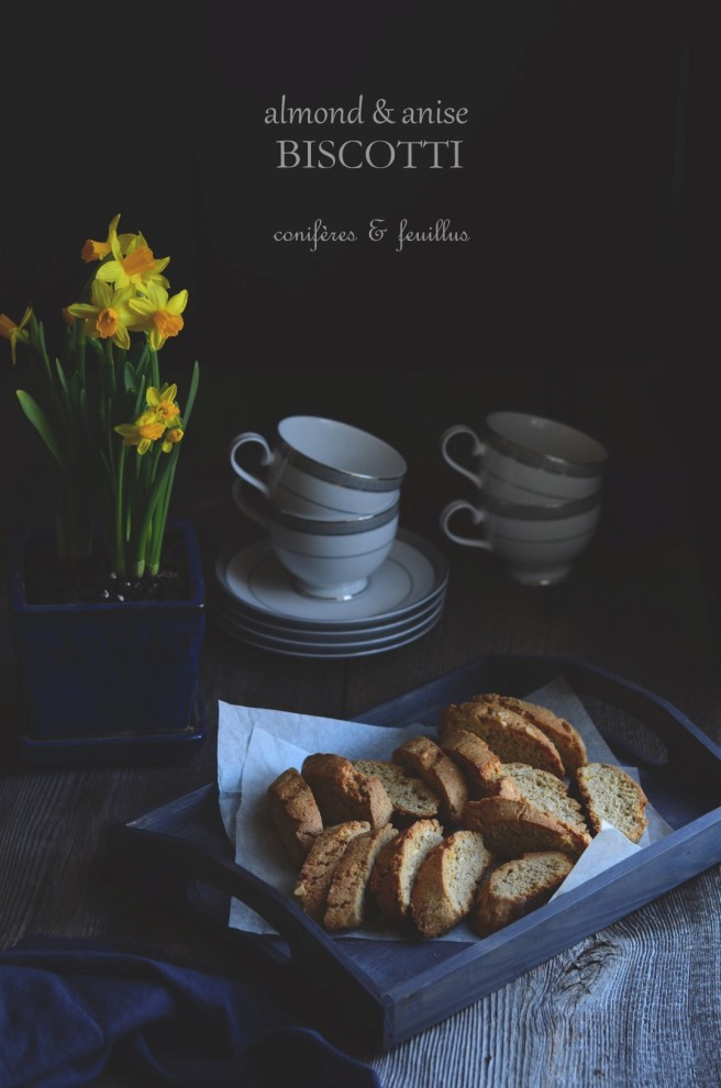 almond anise and orange biscotti | conifères & feuillus
