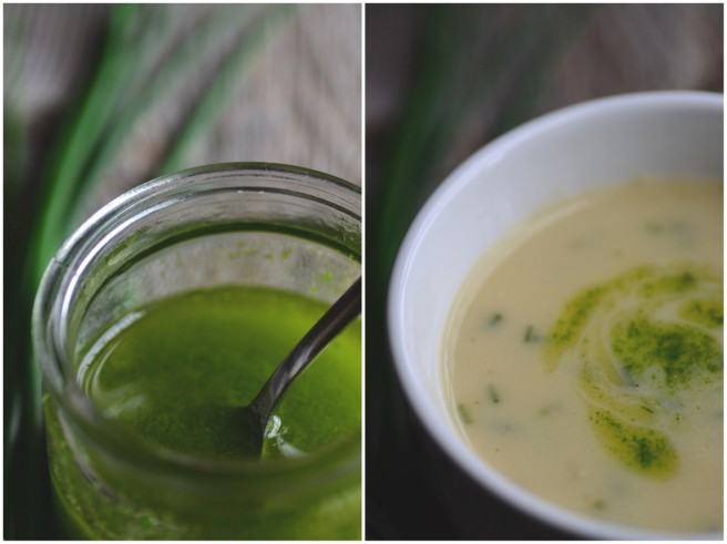 potato, chive, and cheese soup with chive oil | conifères & feuillus