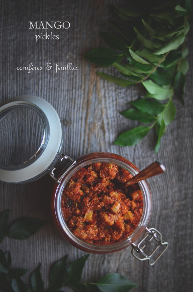 Indian mango pickles | conifères & feuillus