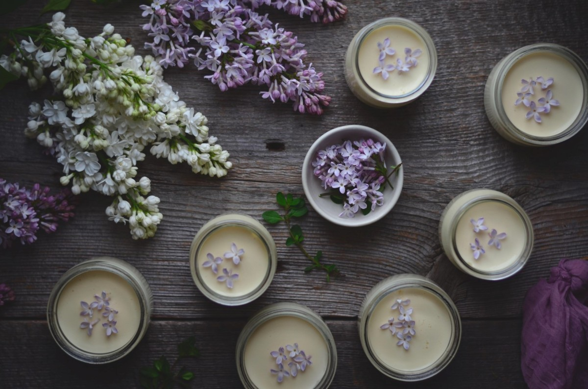thyme and lilac posset