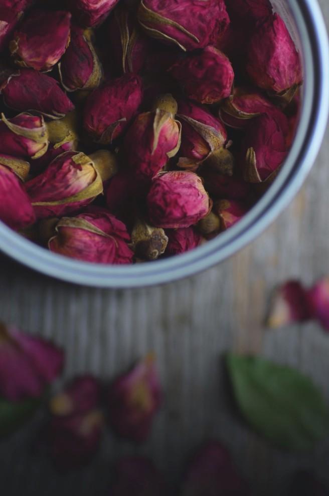 Rose Lassi | conifères & feuillus