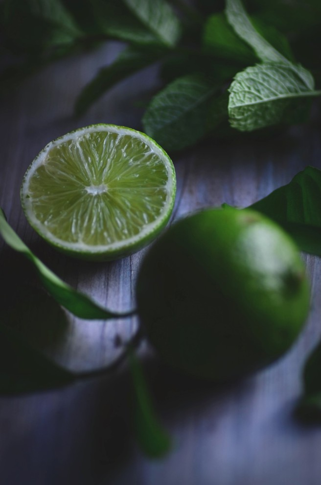 mint and lime | conifères & feuillus