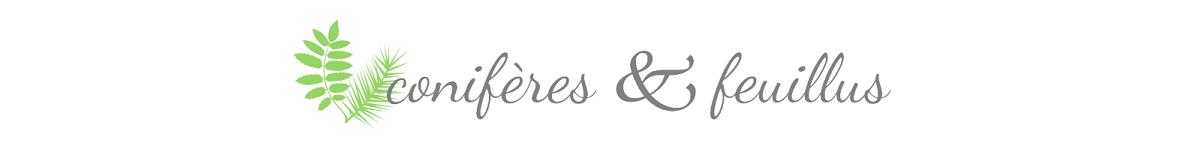 conifères & feuillus