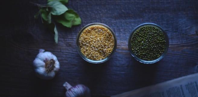 mung beans | conifères & feuillus