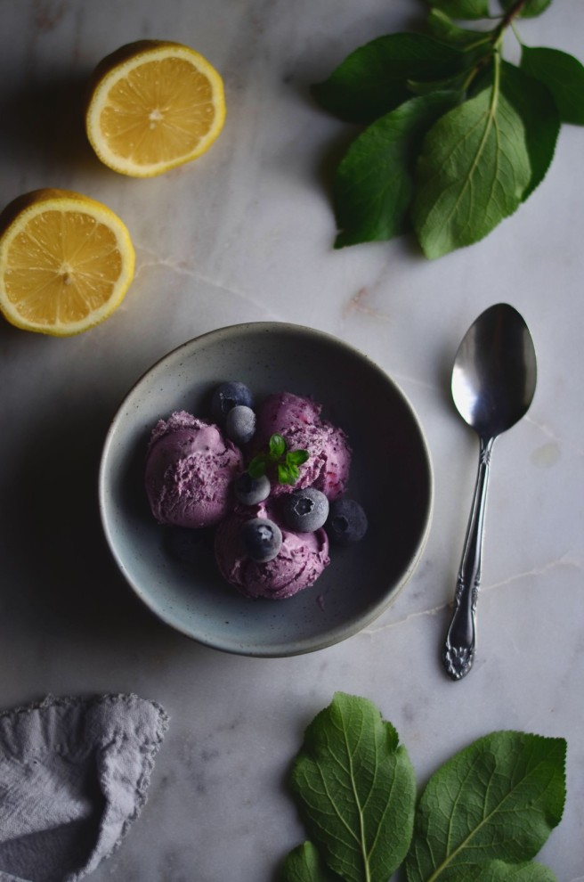 Blueberry & Lemon Ice Cream | conifères & feuillus