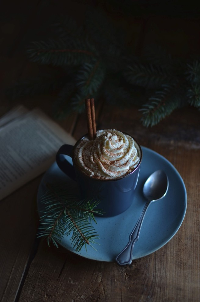 spiced hot chocolate | conifères & feuillus